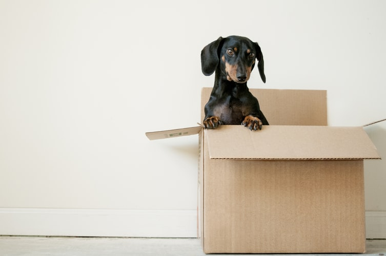 Find out the 3 most common moving mistakes people make. We will also show you how to avoid them and save time and money.