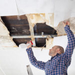 Does your home need mold remediation? Before you commit to the process, you ought to know how it all works, first. Check out this blog.