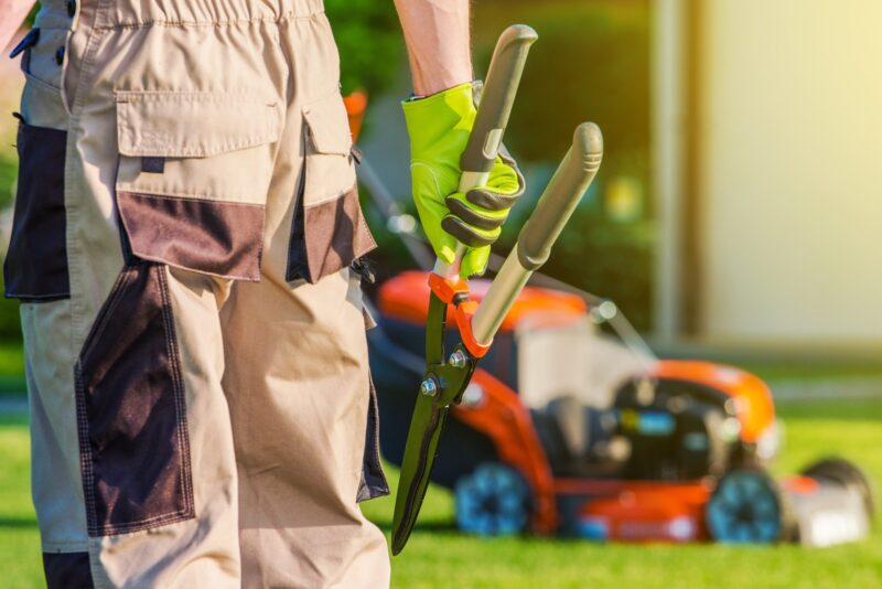 Are you interested in hiring a landscaper for your home? Before you do, learn about the most important mistakes to avoid during the hiring process.