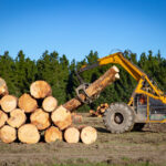 Are you interested in what it's like to work in a sawmill? Here's an inside look into the lumber industry that walks you through a typical day.