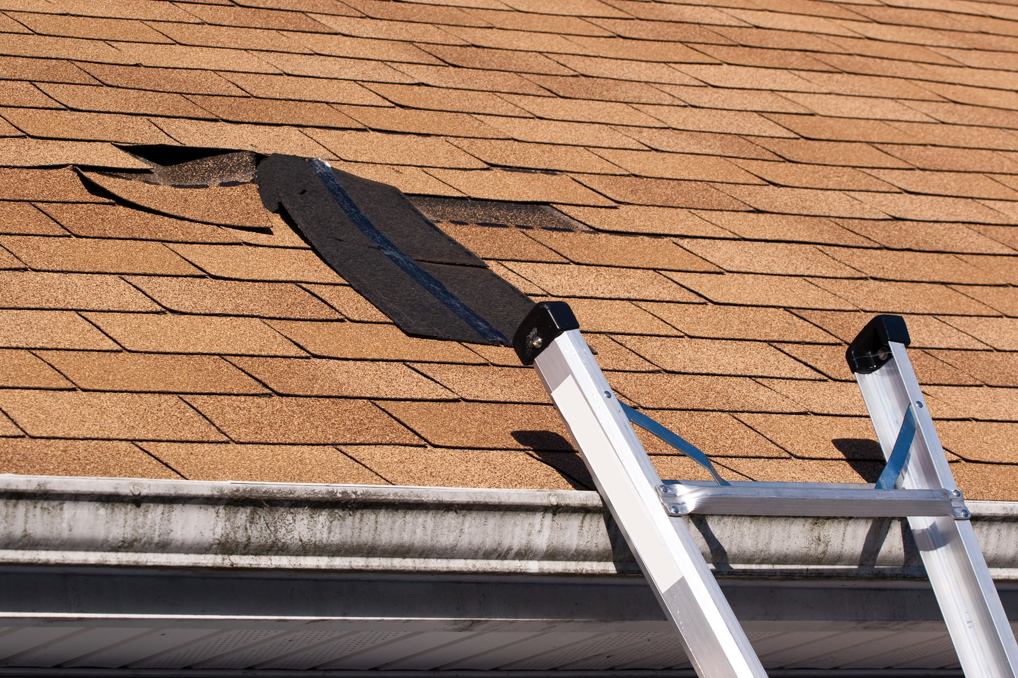 Does your roof look old and outdated? If yes, you may need to get a new roof for your home. Here are the signs you need a new roof.