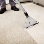 When it comes to cleaning, your carpet often gets left in the dust. Consider these 8 signs you need professional carpet cleaning services ASAP!